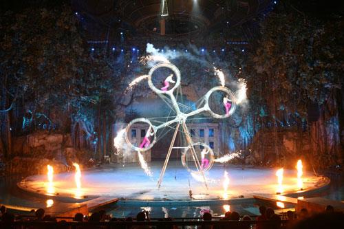 最大的森林实景式舞台布置